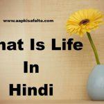 जीवन क्या है? What Is Life In Hindi